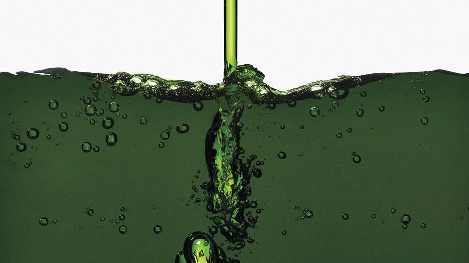 19_Chlorophyll_FNL-932x524