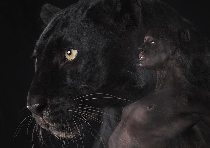 ani-human black panther