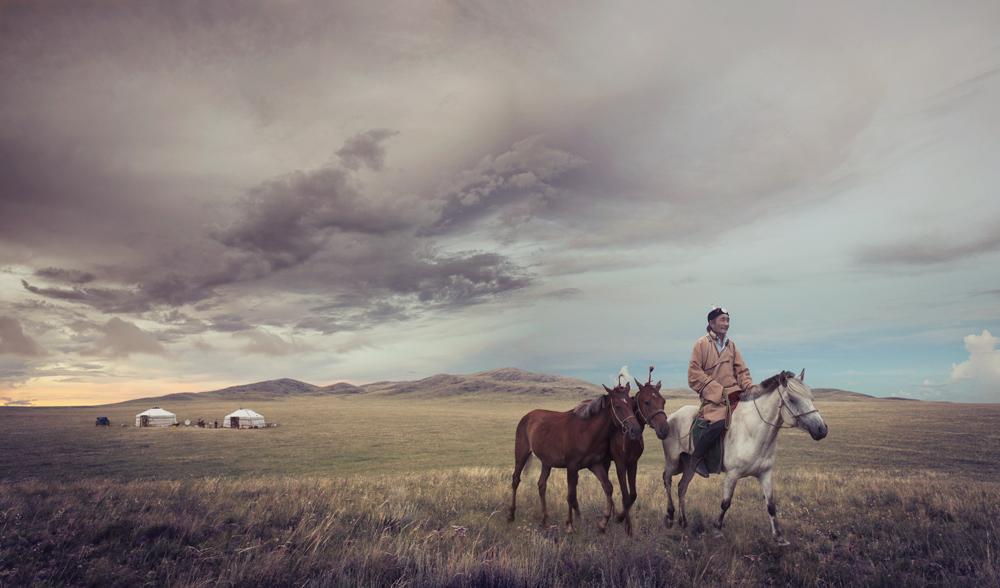 Nick Hall_IPA_Mongolia_Horse_iii_v1