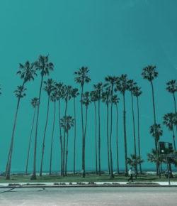 Exhale day 2 (at Santa Barbara, California)