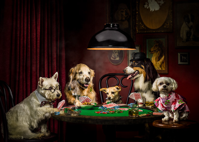 Dogs Playing Poker Atedge Blogs