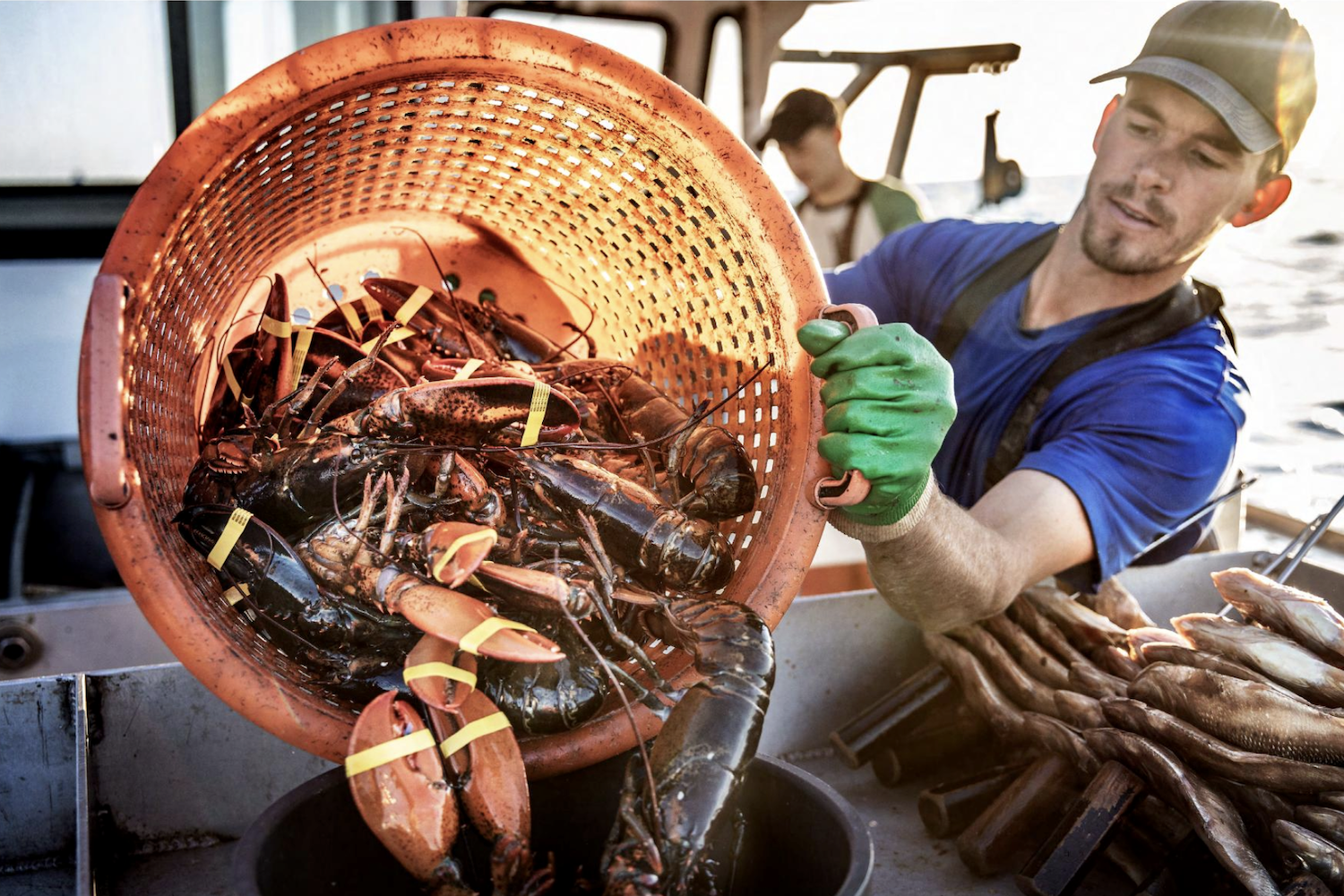 At-Edge Photographer Spotlight on Tadd Myers, the Lobstermen of Little Cranberry Island